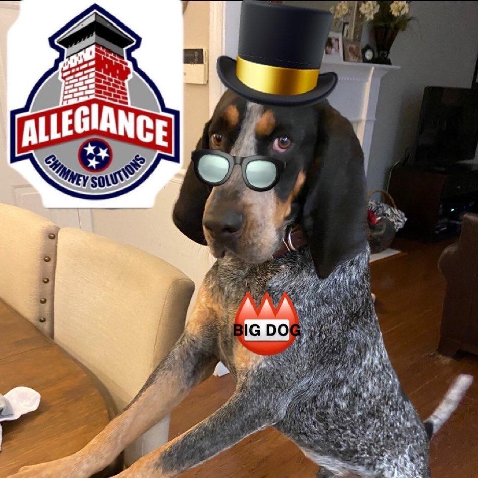 Big Dog makes Allegiance Chimney customers happy